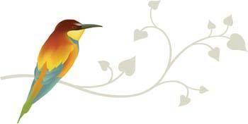 Bird Vector 9
