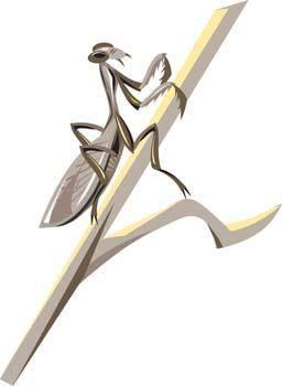 free vector Locust Vector