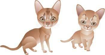 Cat vector 54