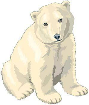 free vector Polar bear 3