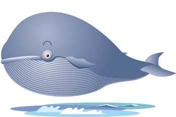 free vector Cute whale 1