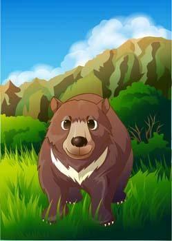 free vector Bear 21