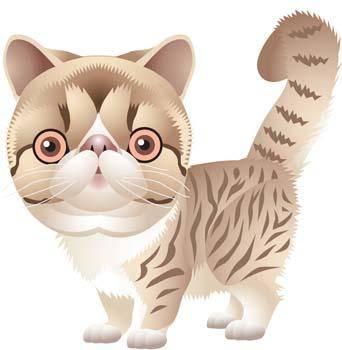 Cat vector 64