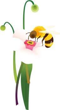 free vector Bee 17