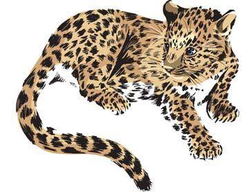free vector Leopard 1