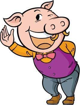 Pig 16
