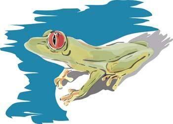 free vector Frog 1