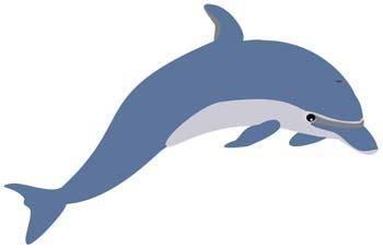 free vector Dolphin Vector 1