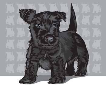 free vector Terrier 2