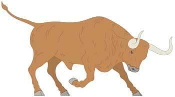 free vector Bull Vector 1