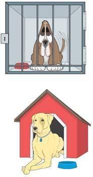 Dog Vector 23