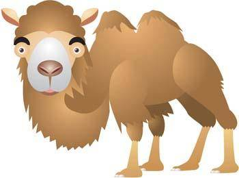 free vector Camel Vector 12