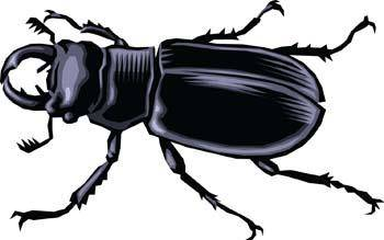 free vector Bugs 2