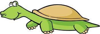 free vector Turtle 10