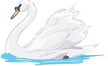 Swan Lake Clipart Swan 4