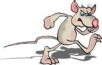 free vector Mice 7