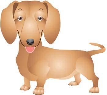 Anak Anjing 1