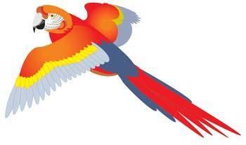 free vector Myna bird 3