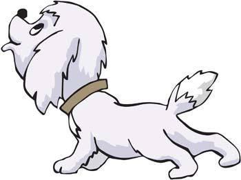 Dog Vector 53