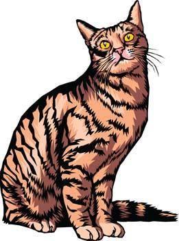 free vector Cat vector 8