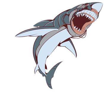 free vector Shark Vector 3