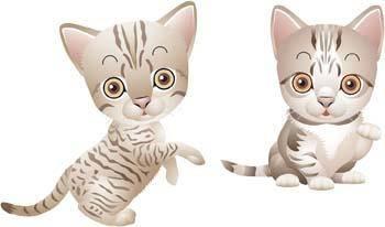 free vector Cat vector 57