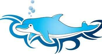 Dolphin Vector 9