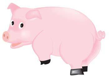 free vector Pig 42