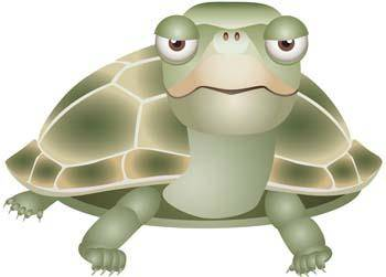 free vector Turtle 5