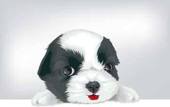 Puppy vector 7