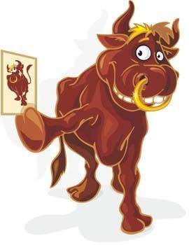 Bull Vector 5