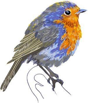 Bird Vector 10