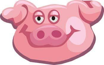 Pig 29