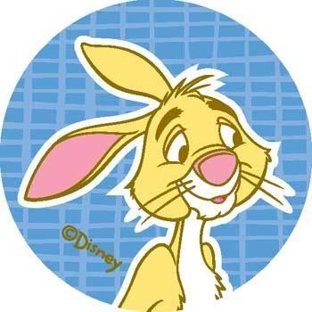 Rabbit 1