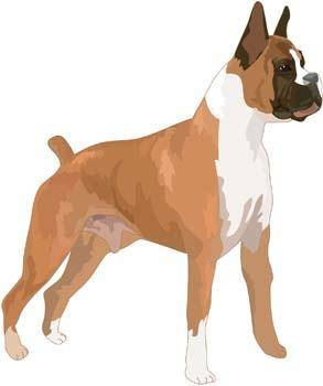 free vector Dog Vector 9