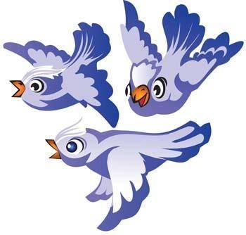 Bird Vector 3