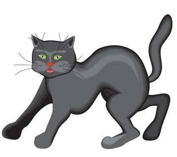 free vector Cat vector 41