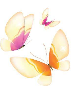 free vector Butterfly Vector 29