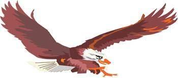 free vector Eagle vector 5