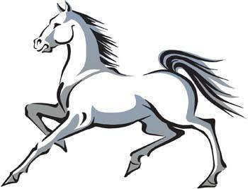 Horse Vector 10