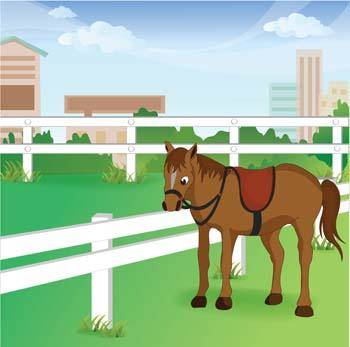 free vector Horse Vector 16