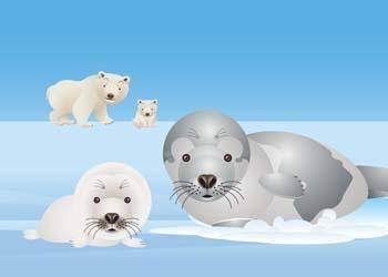 free vector Seals 6