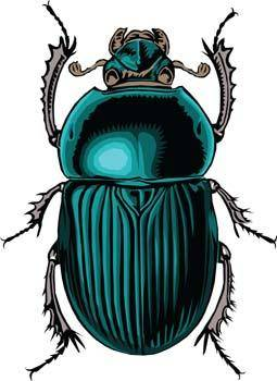 free vector Bugs 1