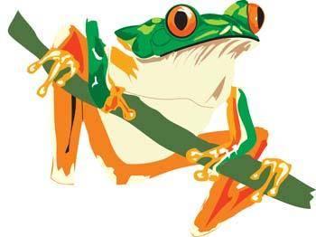 free vector Frog 9