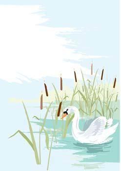 free vector Swan 8