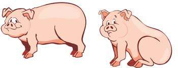 free vector Pig 4