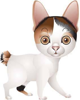 free vector Cat vector 66