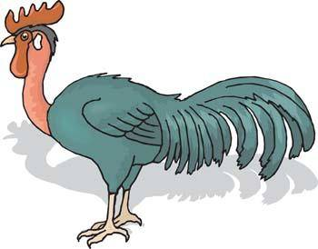 free vector Cock 6