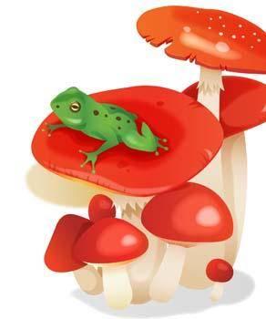 free vector Frog 15