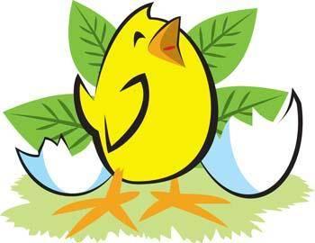 free vector Little Chicken vector 13